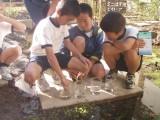 学びの森プロジェクト4