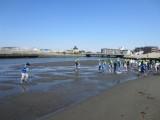 4年 引地川河口見学