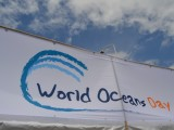 World Oceans Day 2015@湘南