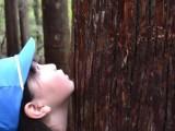 4年生「山の学校」2日目 午後 vol.6