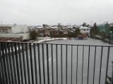 鵠沼は薄っすらと雪化粧