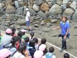 2017 3年生 海の学校 No.3