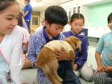 【7月スペシャル】7月19日(水)犬の命について考えてみよう