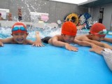 2017年度 水泳授業の様子