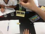 6年生 水溶液の性質の実験