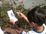 3年生 光の学習