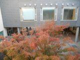 秋を感じる場所