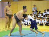 相撲体験 ~錣山部屋の力士の皆さんがやってきた~