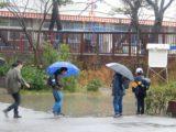 激しい雨の日