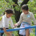 4月の幼稚園
