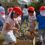第43回 2018ひまわりプロジェクト・収穫祭